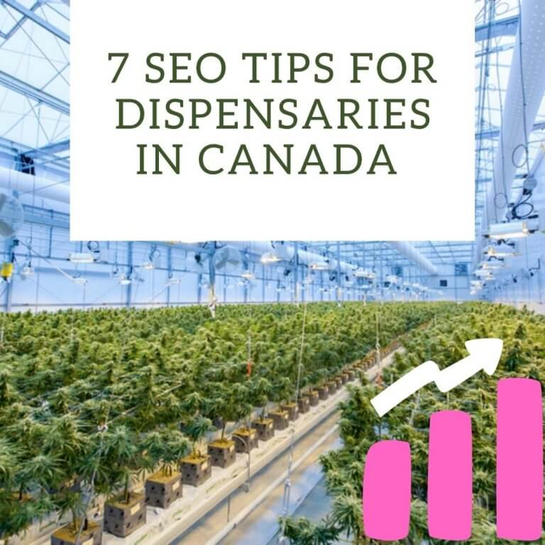 7 SEO Tips for Dispensaries in Canada