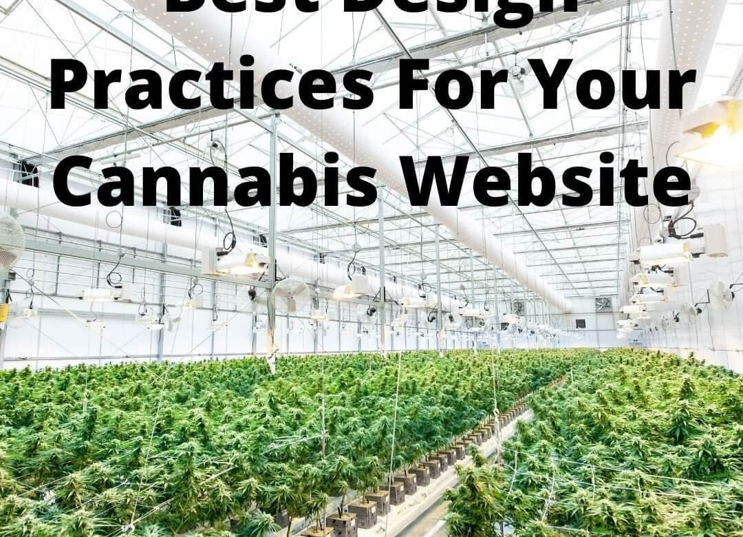 Best Design Practices For Your Cannabis Website