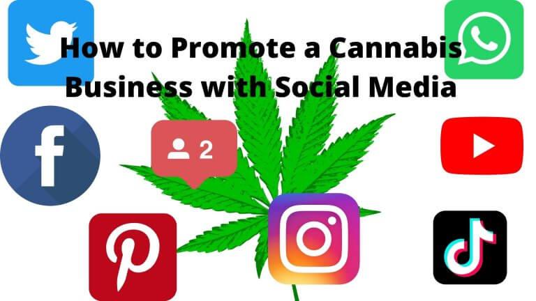 cannabis social media