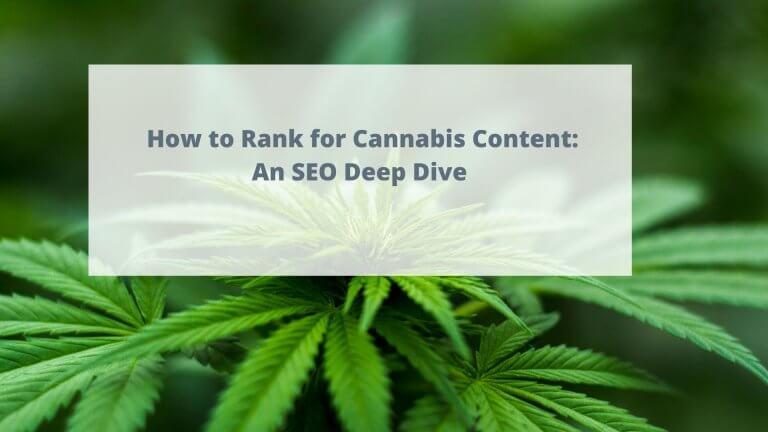 cannabis seo